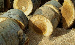 wood-628829_1920